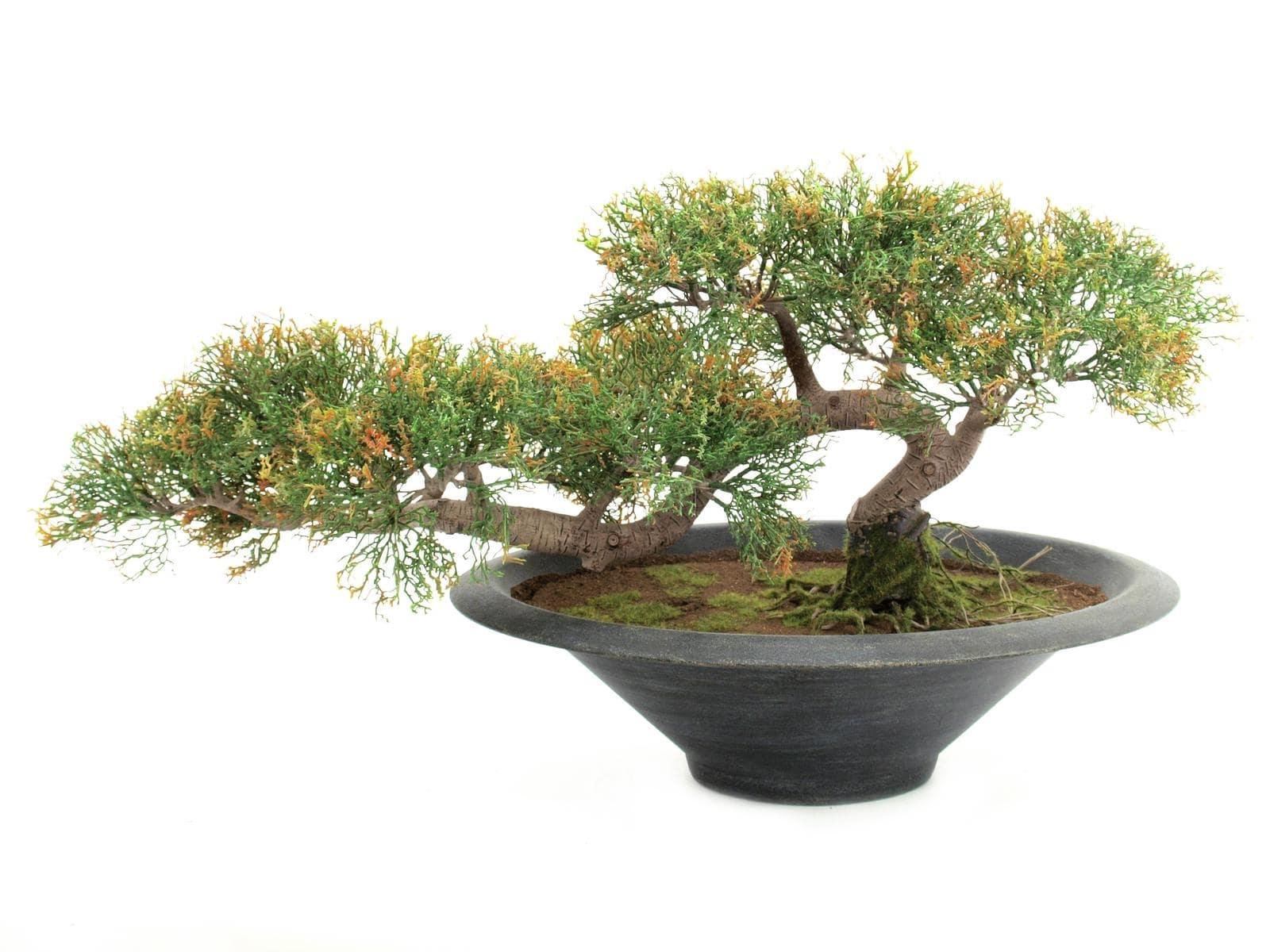 Decorazione cedro bonsai artificiale pensile h cm arredo e